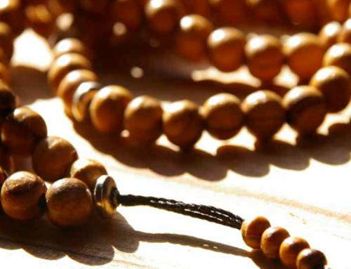 Gatherings of Dhikr in Madrasahs